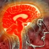 Symptomatology in Mild Traumatic Brain Injury
